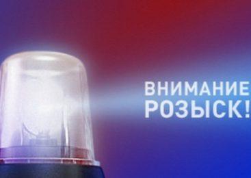 В Нижнем Новгороде пропала 15-летняя Анна Кропотова