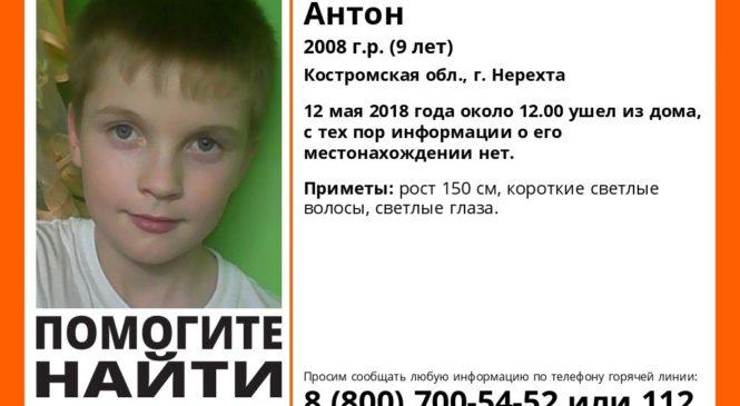 В Костромской области пропали два брата
