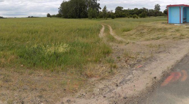 В Кировском районе 17-летний парень подозревается в убийстве 19-летней девушки